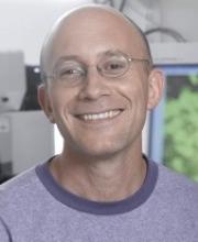 Yuval Dor